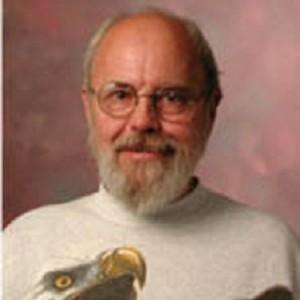 Dale Rolfsen