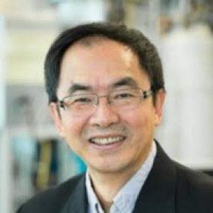 Xiaotao (Tony) Bi